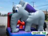 Pula Pula Elefantinho